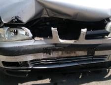 Dovada video ca au intrat porcii pe Autostrada Soarelui, desi CNAIR sustinea ca incidentul nu se confirma