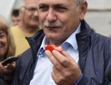 Dragnea sustine ca membri ai unor institutii protejeaza mafia legumelor si fructelor: Nu-i stim, dar nu se putea fara protectie