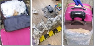 Drogurile vin in trolere colorate la Timisoara, din Spania. Dealerii, prinsi in flagrant. Video