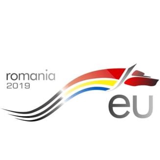 E oficial: Lupul dacic va fi logo-ul Romaniei pentru presedintia Consiliului UE. Castigatorul concursului e un elev de 14 ani