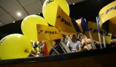 """EDITORIAL / Cine salveaza PNL din ghearele """"liberalilor""""?"""