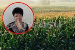 """Editie Online: Judetul Braila: """"Number one"""" in Romania, la obtinerea de seminte pentru agricultura"""
