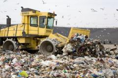 Educatia lasa de dorit: GUNOIUL de grajd - la masina de gunoi, cel menajer - pe camp