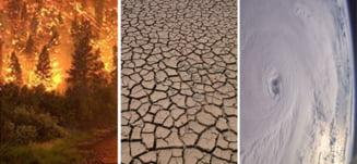 Efectele dezastruoase ale incalzirii globale