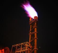 Efectele modificarii OUG 114: Furnizorii de gaz risca sa intre in faliment, din cauza ca Guvernul se joaca de-a plafonarea