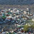 Efectele poluarii apelor. Cercetarorii au descoperit urme de plastic in tesutul muscular al pestilor