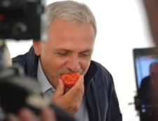 """Efectul """"Tomata"""": importul masiv de rosii in Romania. Statul """"sparge"""" in continuare milioane de euro pe programul total ratat gandit de Liviu Dragnea"""