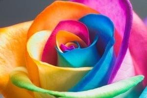 Efectul culorilor asupra sanatatii mentale
