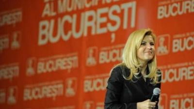 Elena Udrea: Am declarat razboi regilor constructiilor ilegale