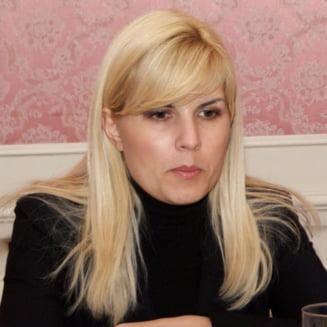 Elena Udrea: La diferenta de 44 de voturi este evident ca suntem neincrezatori