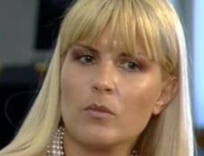 Elena Udrea, coordonator al campaniei de comunicare a PD-L pentru parlamentare