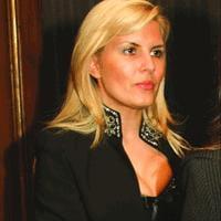 Elena Udrea, verificata de ANI