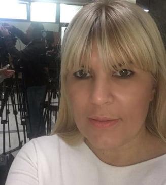 Elena Udrea a sesizat Comisia SRI din Parlament, in asteptarea sentintei definitive in Gala Bute