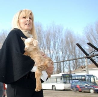 Elena Udrea da 5 milioane de euro pe actiuni de imagine