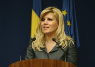 Elena Udrea mai pregateste o licitatie de 20 de milioane de euro