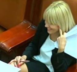 Elena Udrea poate fi urmarita penal - deputatii au votat prima cerere a DNA