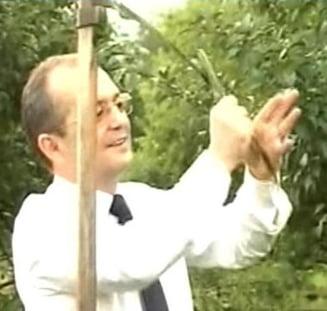 Emil Boc, supravietuitorul (Opinii)