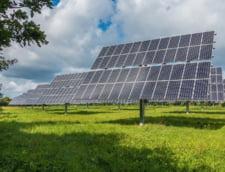 Enel construieste un parc fotovoltaic urias in Brazilia cu 355 de milioane de dolari