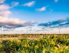 Energia produsa de instalatiile fotovoltaice si eolienele terestre va fi mai ieftina decat cea traditionala, in 2020