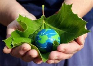 Energia verde ar putea crea 60 milioane de locuri de munca in 20 de ani