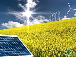 Energia verde ne arde la buzunar, dar face toti banii