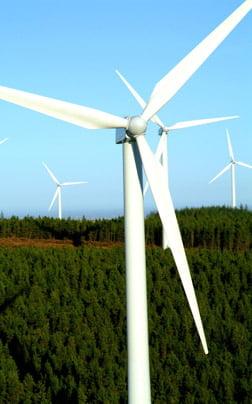 Eolienele vor produce mai multa energie decat centrala de la Cernavoda