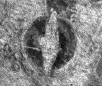 Era la doar 50 de centimetri sub pamant si nimeni nu stia. Ce-au descoperit arheologii in Norvegia (Video)