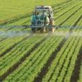 """Europarlamentarii cer reducerea cantităţii de pesticide folosite. Ce prevede strategia """"De la fermă la furculiță"""""""