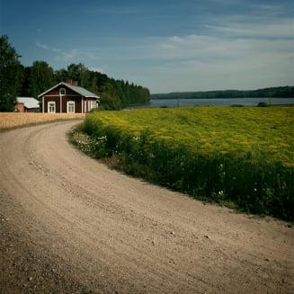 Executii in stil mafiot la o mica ferma din Finlanda
