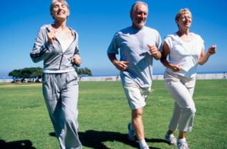 Exercitiile fizice opresc micsorarea creierului