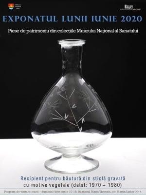 Exponatul lunii iunie, la Muzeul National al Banatului din Timisoara