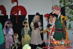 Expozitie de papusi si marionete la Targu Jiu
