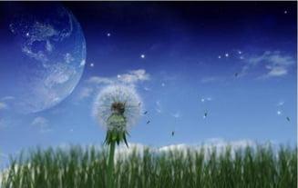 Extraterestrii au parasit Universul?