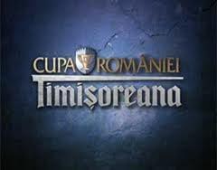 FC Botosani joaca, astazi, in 16-imile Cupei Romaniei