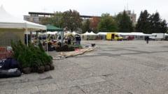 FESTIVALUL CASTANELOR-Astazi are loc deschiderea oficiala a targului EXPO FLORA