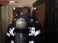 FOCAR DE INFECTIE - Adapost de caini intr-un apartament de doua camere (VIDEO)