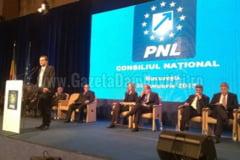 FOTO - Delegatia PNL Dambovita la Consiliul National