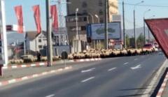 FOTO - Transhumanta prin Sibiu. Turma de oi la plimbare pe Soseaua Alba Iulia