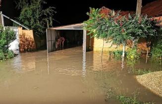 FOTO. Furtuna puternica a facut din nou prapad in Banat! Gospodarii si centre comerciale inundate, copaci pusi la pamant