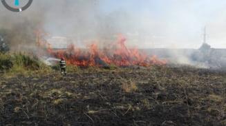FOTO. Incendiu de proportii la Stuparei. 7 hectare afectate...
