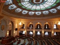 Fara condamnati la Cotroceni? Senatul a respins legea propusa de PNL