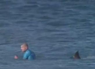 Faza incredibila: Un sportiv a fost atacat de un rechin si toata scena a fost filmata (Video)