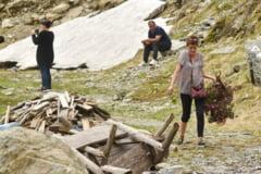 Femeia care a rupt bujori de munte risca o amenda de pana la 5.000 de lei. Autoritatile inca nu au reusit sa o identifice