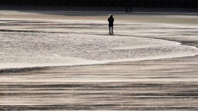 "Fenomen misterios in Statele Unite: ""Toata plaja a devenit neagra, nu am vazut asa ceva in viata mea"""