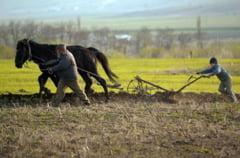 Fermieri, grabiti-va! A inceput numaratoarea inversa pentru solicitarea ajutoarelor de MINIMIS