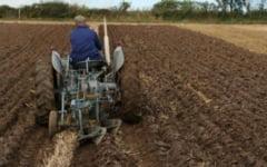 Fermierii buzoieni, greu de urnit la depunere a cererilor de subventii. Atentie, vor fi penalizari de intarziere