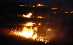 Fermierii care dau foc la miristi ar putea ramane fara subventii