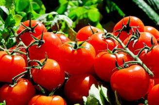 Fermierii solicita autoritatilor salvarea agriculturii romanesti: Vrem programe de investitii in piete de desfacere!