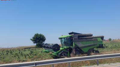 Fermierii sunt fortati sa accepte munca la negru, pentru ca zilierii nu vor sa lucreze ca-si pierd ajutoarele sociale