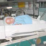 Fertilizarea in vitro, sistata la Timisoara